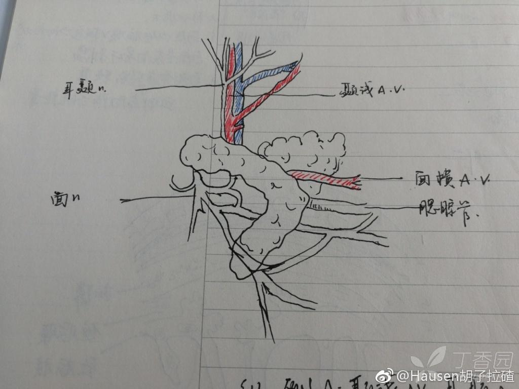 2018年湘雅医院经验考博骨科【已录】专业装修设计辅助工具图片